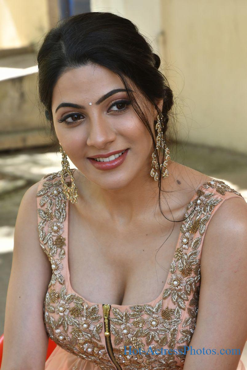 Nikki Tamboli Latest Hot Cleavage Photos At Thippara Meesam Movie Press Meet
