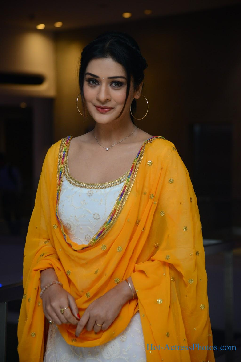 Payal Rajput Cute Photos At Disco Raja Success Meet